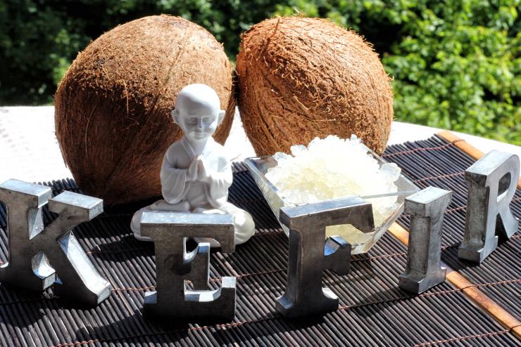 Kokoswasser Kefir - das selbst gemachte Wellness Getränk - mit wertvollen Inhaltsstoffe des Kokoswassers, probiotischen Milchsäurebakterien und Hefen ohne zusätzlichen Zucker. Ein leckeres süß-säuerliches Rezept mit Wasserkefir - ganz einfach ein leckeres Getränk mit Wasser Kefir und Kokoswasser herstellen - Lecker, gesund und einfach gut.