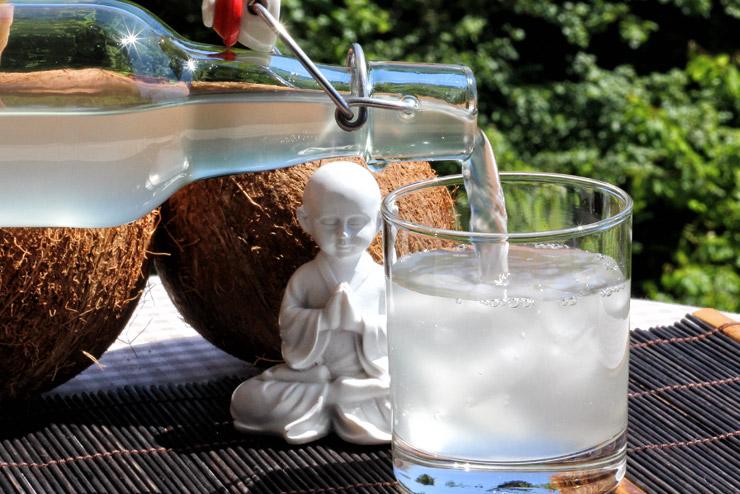 Kokoswasser Kefir - das selbst gemachte Wellness Getränk - mit wertvollen Inhaltsstoffe des Kokoswassers, probiotischen Milchsäurebakterien und Hefen ohne zusätzlichen Zucker. Ein leckeres süß-säuerliches Rezept mit Wasserkefir - ganz einfach ein leckeres Getränk mit Wasser Kefir und Kokoswasser herstellen - Der Genuß