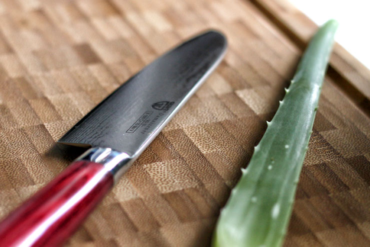Aloe Vera Kombucha mit Mangold und Spinat - ein toller Smoothie für heiße Tage - Die Aloe Vera
