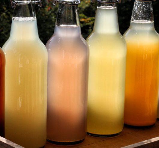 selfmade water kefir - water kefir bottles