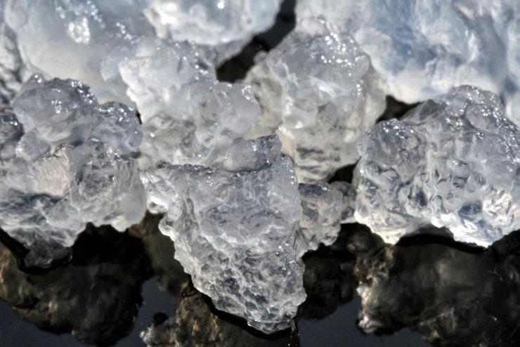 Was ist Kahmhefe? – 6 Strategien gegen Kahmhefe im Wasserkefir - Wasserkefir Kristalle