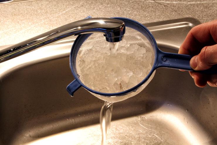 Was ist Kahmhefe? – 6 Strategien gegen Kahmhefe im Wasserkefir - Wasserkefir Kristall abspülen