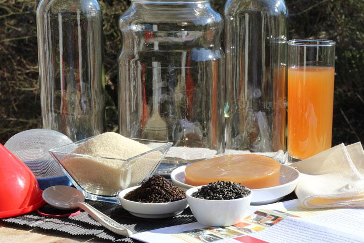 What do I need to make my own selfmade kombucha? - starter kit