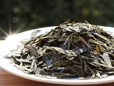 Which tea is perfect for your Kombucha production? Just click here to find it out.