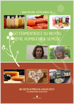 Wonderful 232-pages Fementation eBook with detailed tutorial about kefir, kombucha and fermented vegetables,and the best 80 recipes as pdf. e-book (German version)