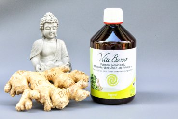 Vita Biosa GINGER 500ml in Organic Quality - Fermented Drink with lactic acid bacteria and herbs - Kopie