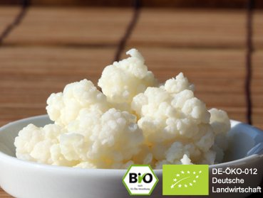 Would you like to make delicious milk organic kefir at home? Here you can buy purchase tibetan / caucasian kefir grains kefir fungus - free tutorial - secure order