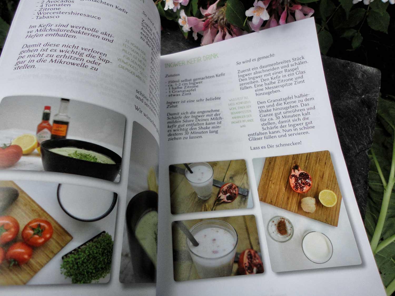 bio kefirknollen kefirpilze kaufen bestellen online kaufen kefir selber machen natural kefir. Black Bedroom Furniture Sets. Home Design Ideas