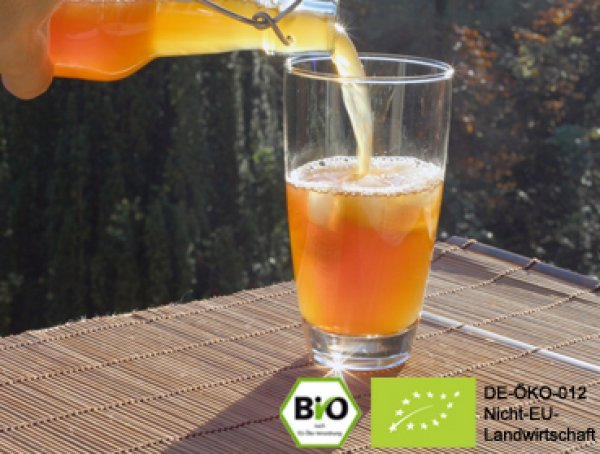 Make your own delicious organic kombucha tea with the help of our real live kombucha mushroom and benefit from the positive effect.